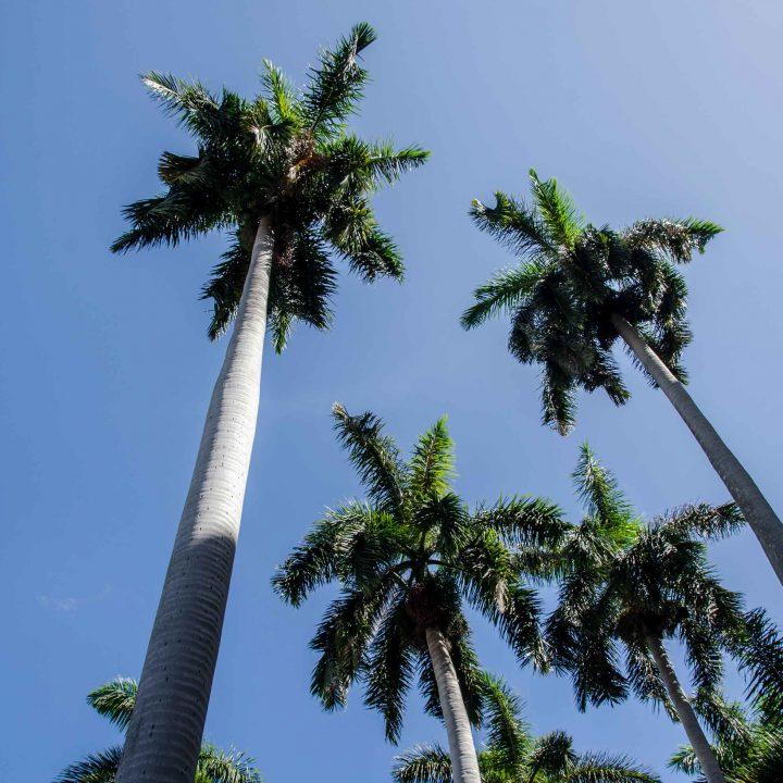 Cuba - Retour sur notre voyage (vidéo)