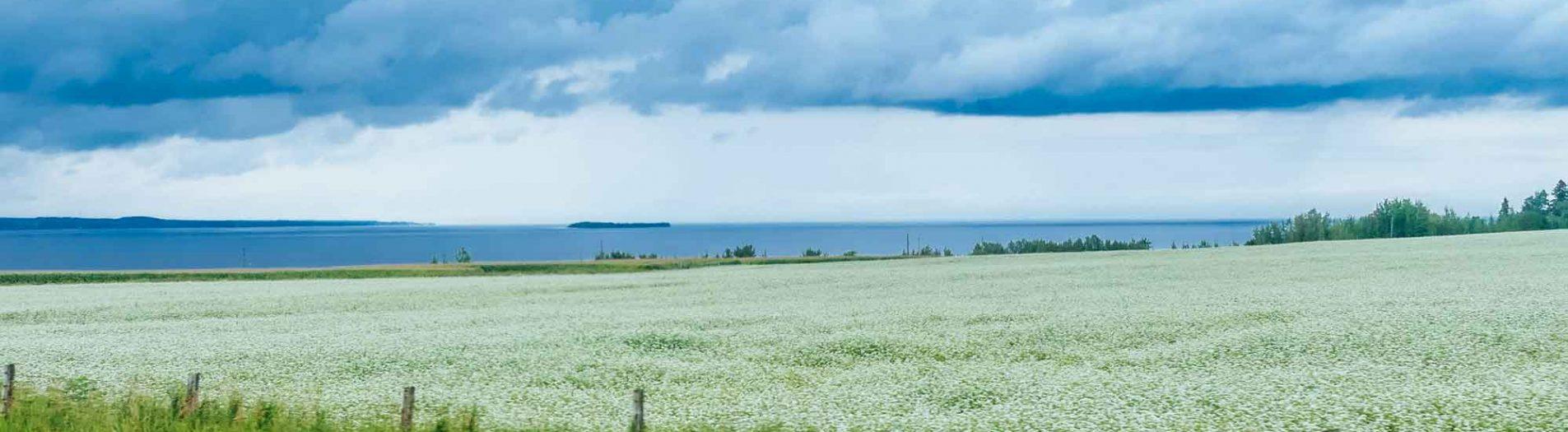 Québec - Sur la route entre la Mauricie et le Lac Saint-Jean