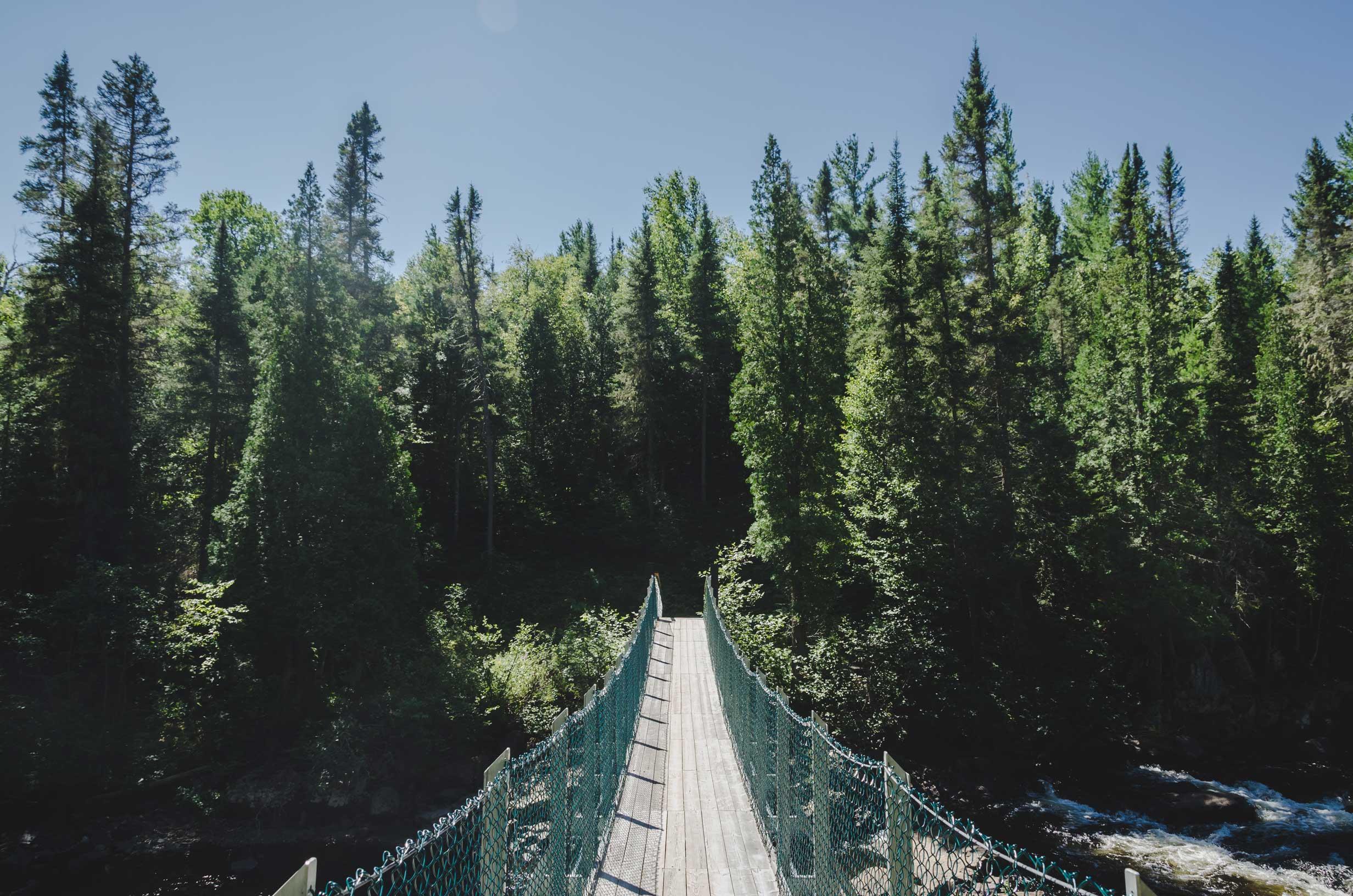 passerelle nature